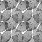 葉脈のガラスフィルムデザイン